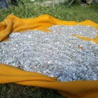 Cel mai mare tezaur monetar descoperit în România